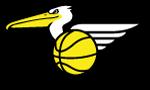 BECEGE LOGO basketball doetinchem